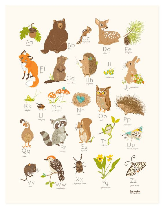 Woodland clipart alphabet. Wall art nursery decor