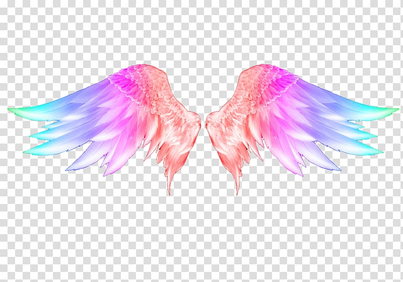 Snowflake art wing feather. Angels clipart colorful
