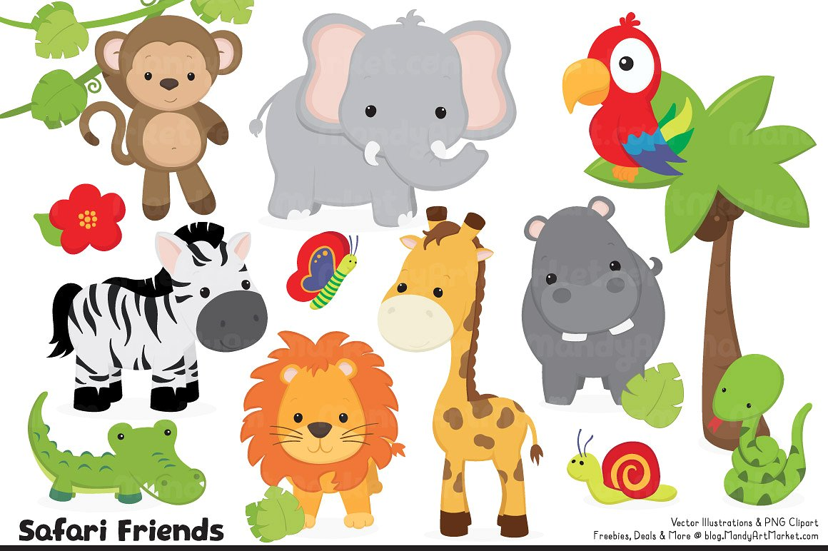 Cute jungle animal illustrations. Animals clipart
