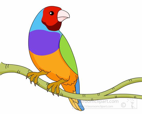 Animal gouldian finch birdgouldianfinchclipartjpg. Animals clipart bird