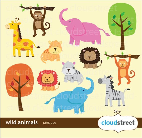 Animals clipart borderline.  best cute animal