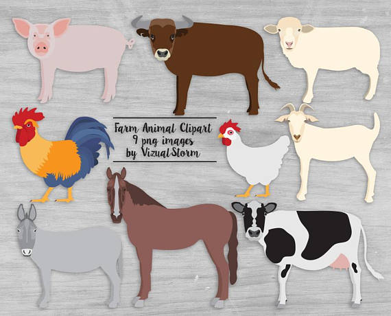 Farm animal cattle barn. Animals clipart cow