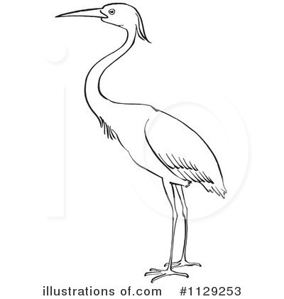 Heron illustration by picsburg. Animals clipart crane