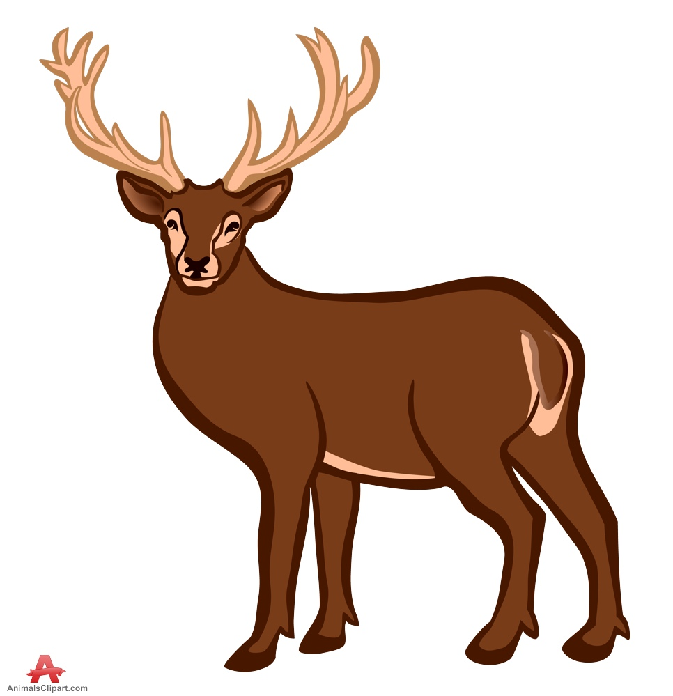 Color design free download. Animals clipart deer