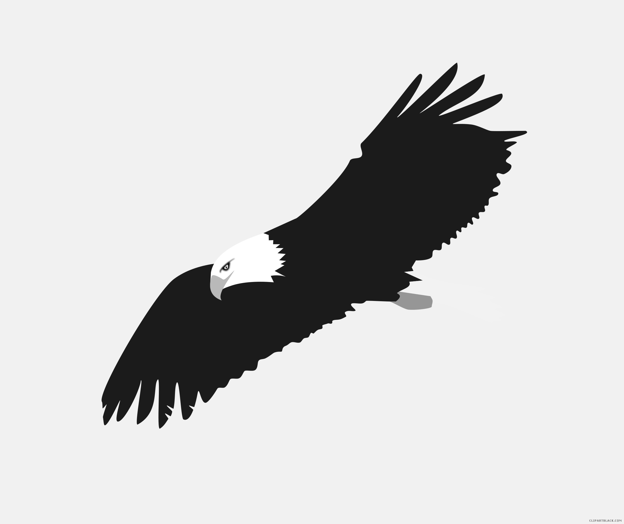 Eagles clipart dead eagle. Soaring animal free black