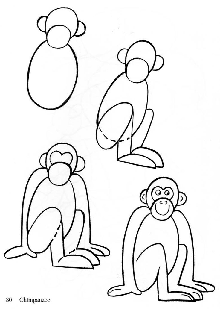 Animal clipart easy. Monkey drawing step by