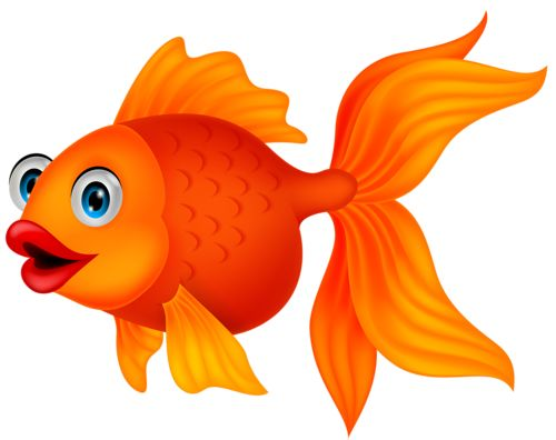 best sea images. Animals clipart fish