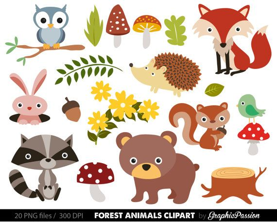Animals clipart forest. Baby digital woodland clip