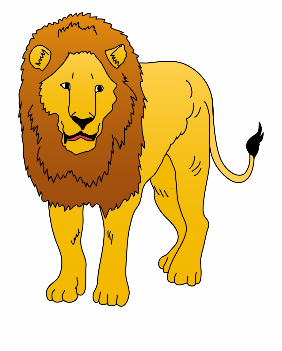 Lions free png images. Clipart lion wild animal