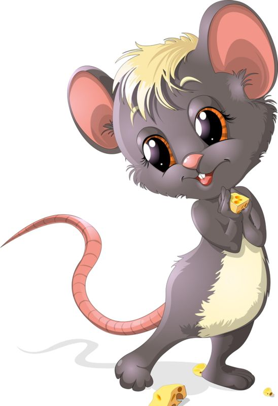 best images on. Animals clipart mouse
