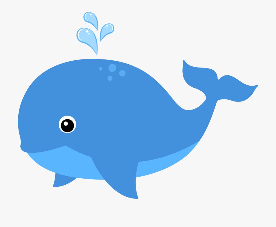 animals clipart sea
