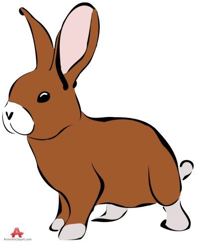 Animals clipart rabbit. Clipartaz free collection of