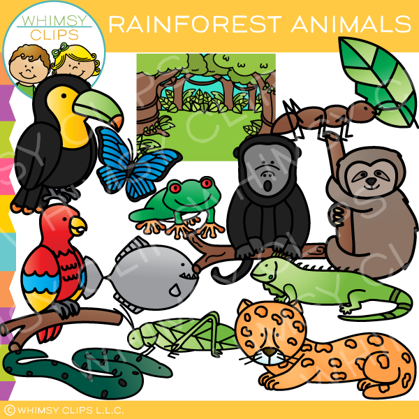 Animals clipart rainforest. Clip art images illustrations