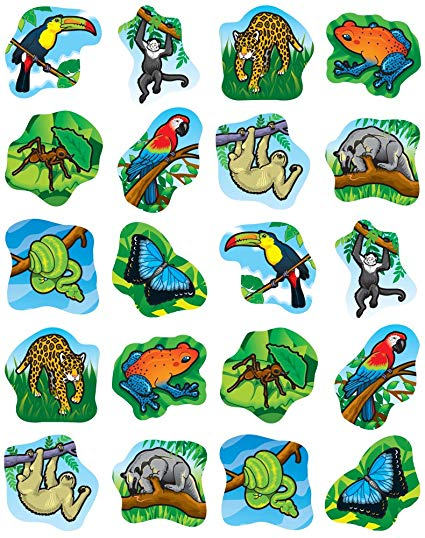 Animals clipart rainforest. Amazon com carson dellosa