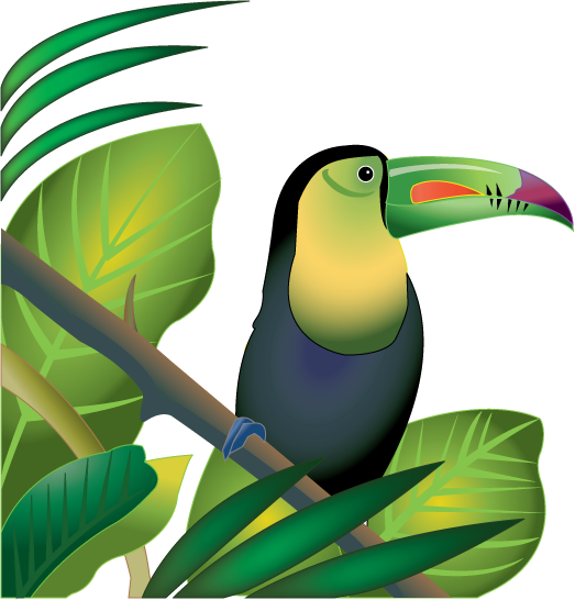 Chameleon clipart rainforest bird. Jungle plants clip art