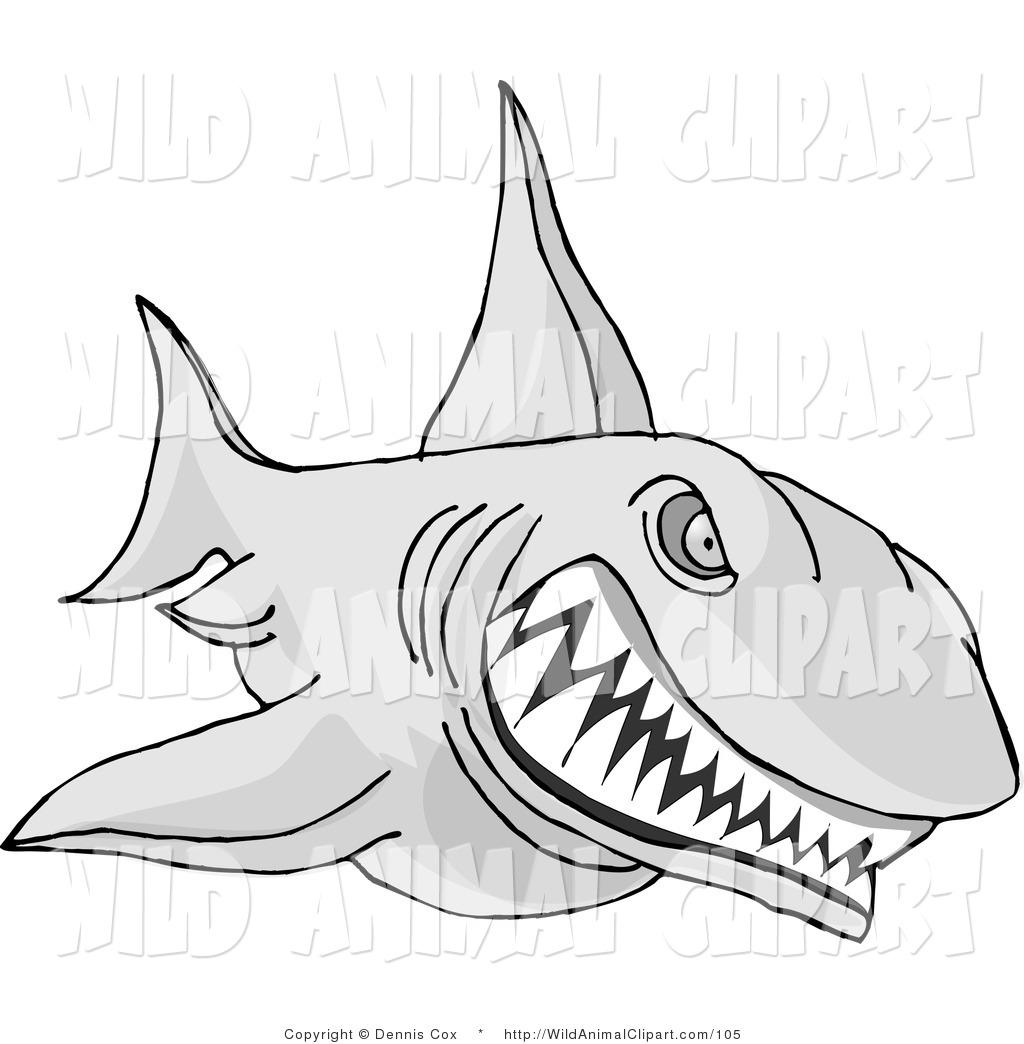Animals clipart shark. Clip art of an
