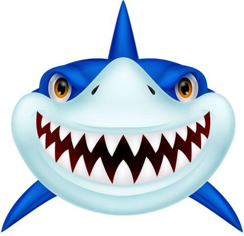 best sea clip. Animals clipart shark