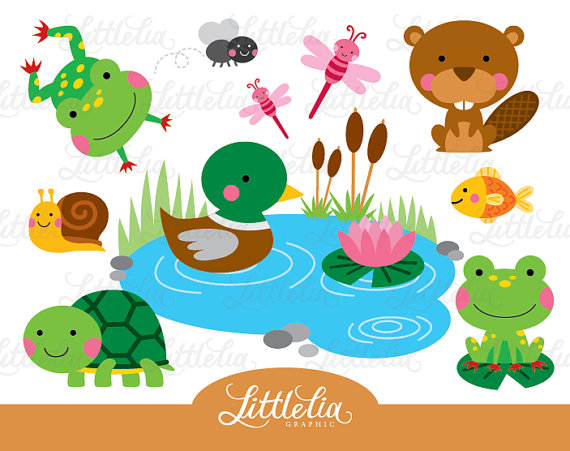 Pond friend frog and. Animals clipart turtle