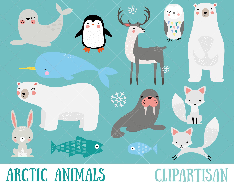 Arctic clip art polar. Animals clipart winter