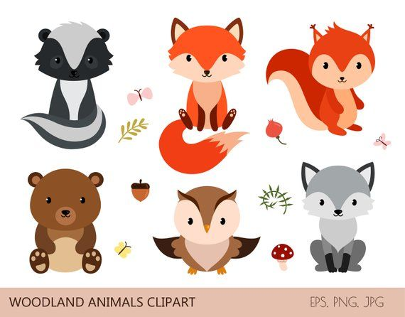 Woodland clipart woodland critter. Cute animals digital printable