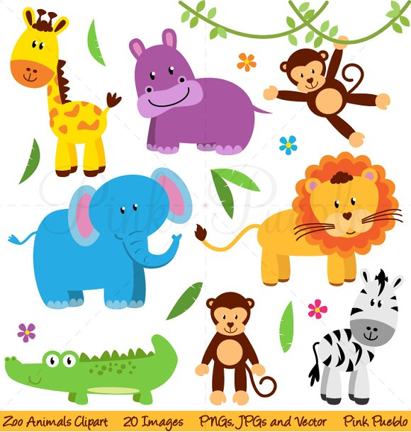 Zoo jungle safari illustrations. Animals clipart
