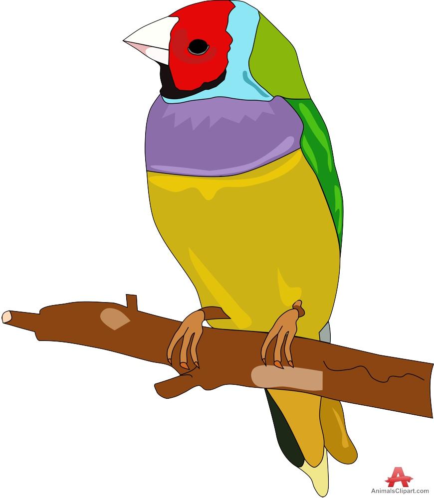 Hassoun colorful free design. Animals clipart bird