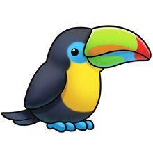 Animals clipart bird. Tropical pinteres toucan best