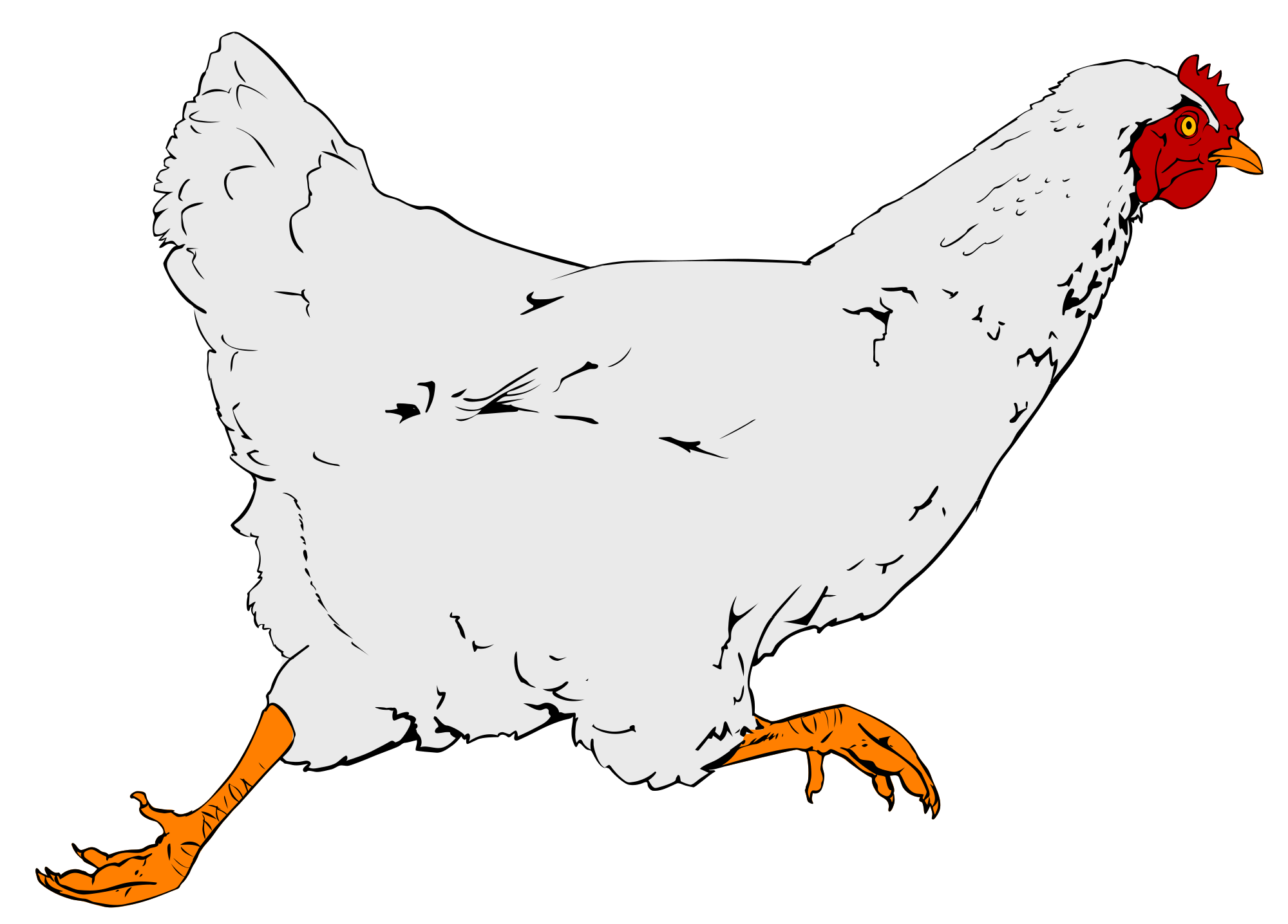 Animals clipart chicken. File svg wikimedia commons