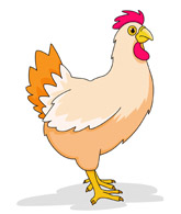 Search results for clip. Animals clipart chicken