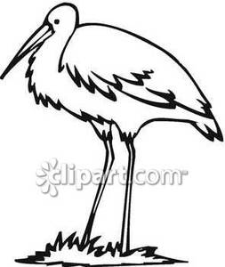 Animals clipart crane. Feathered black and white