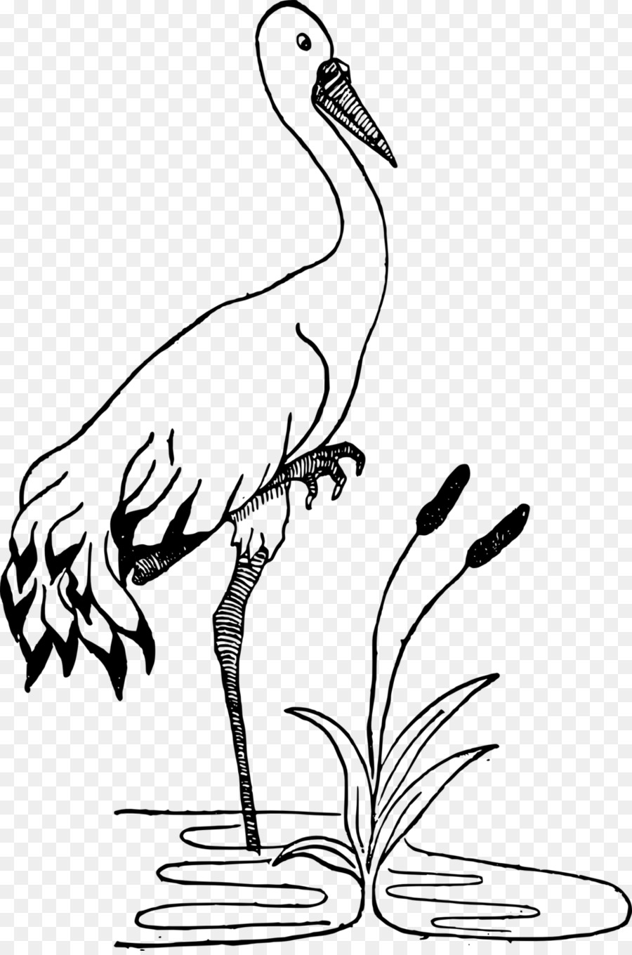 Animals clipart crane. Black and white drawing