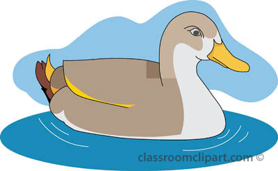 collection of animal. Animals clipart duck