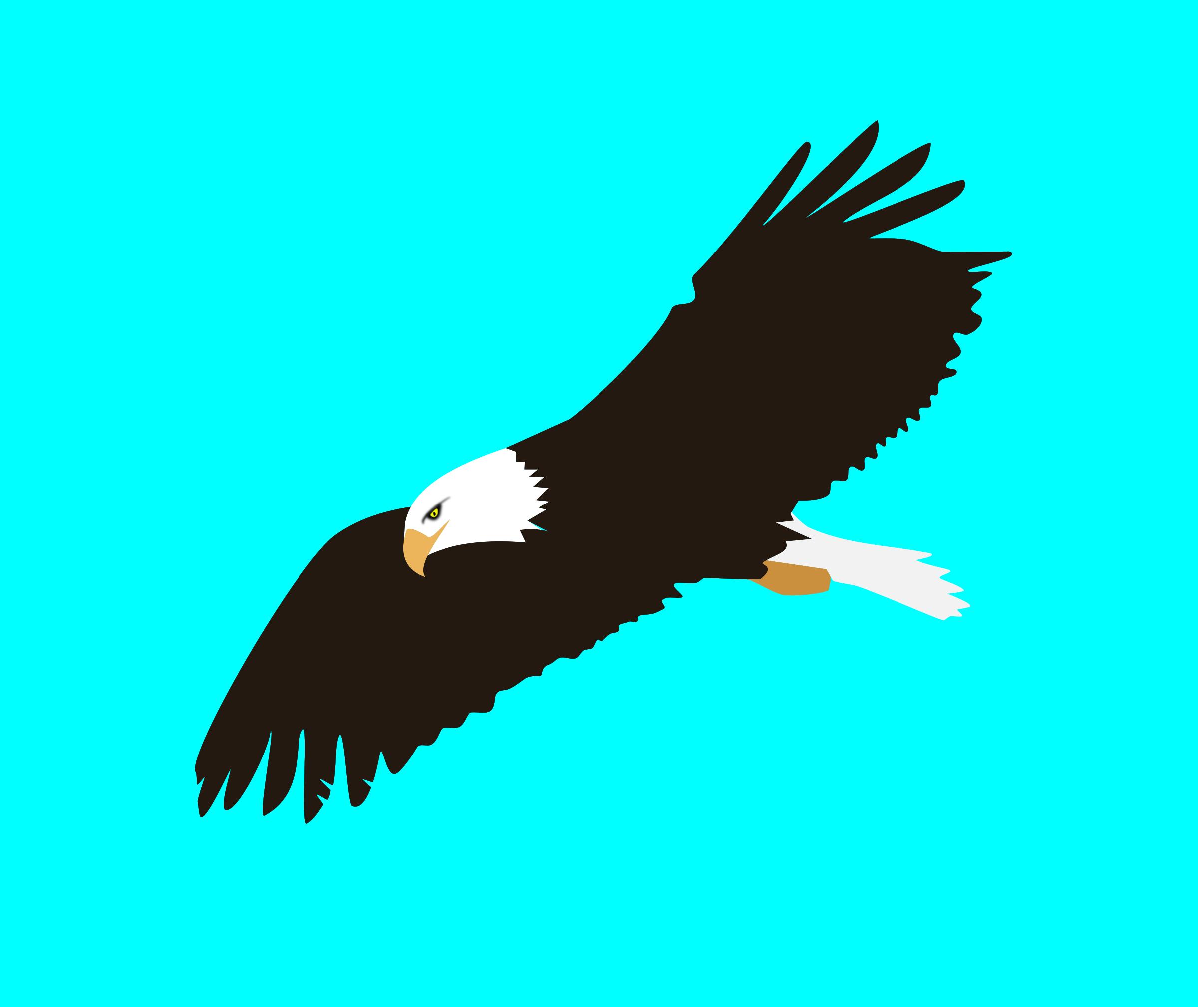 Soaring big image png. Animals clipart eagle