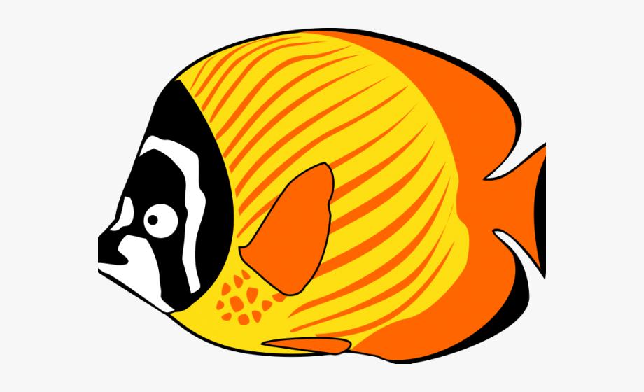 Animals clipart fish. Sea png download cartoon