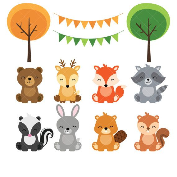 Woodland baby animal . Animals clipart forest