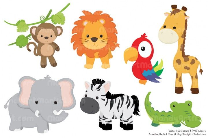 Cute animal vectors by. Animals clipart jungle