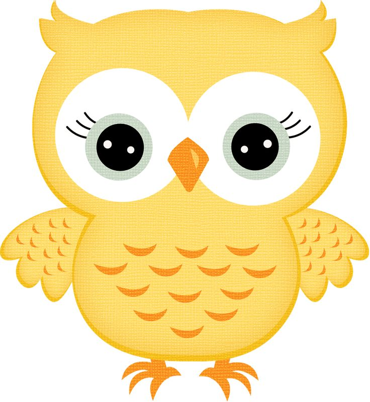 Animals clipart owl.  best images on