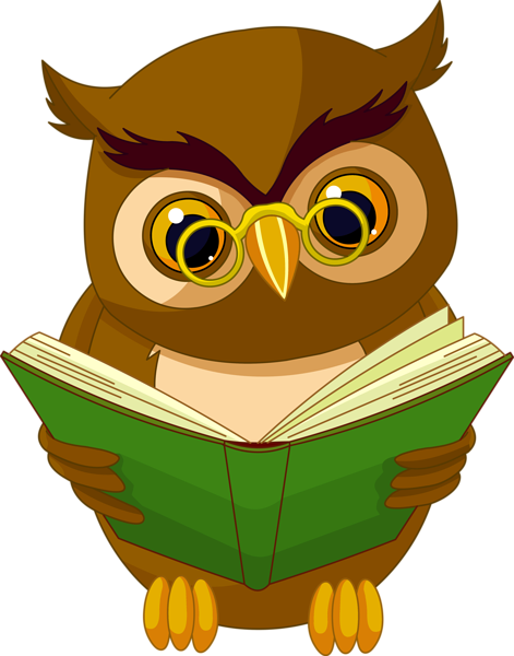 Pin by piafkapin on. Animals clipart owl