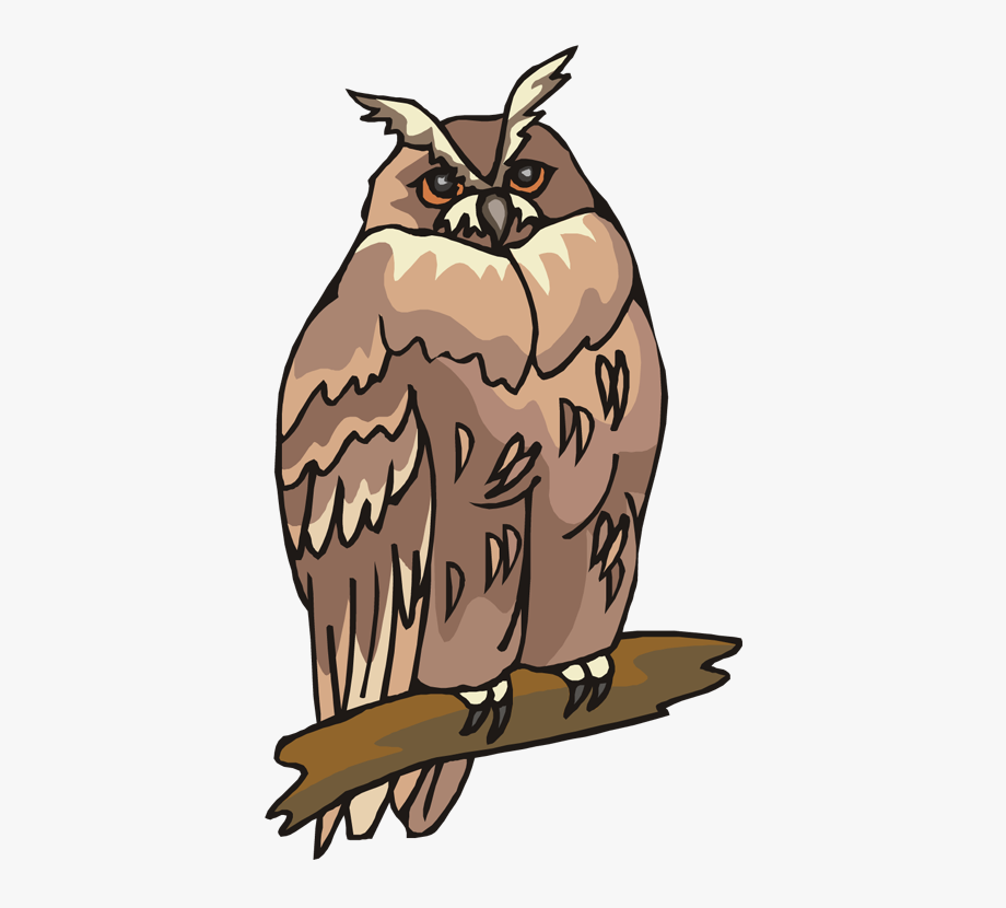 On air free . Animals clipart owl
