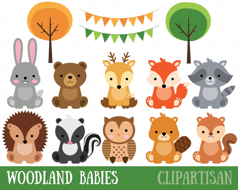 Animals forest animal . Woodland clipart baby boy