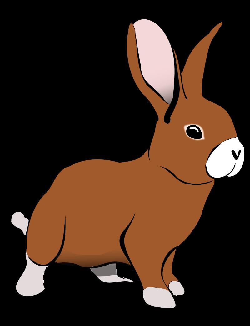 Show . Free clipart rabbit