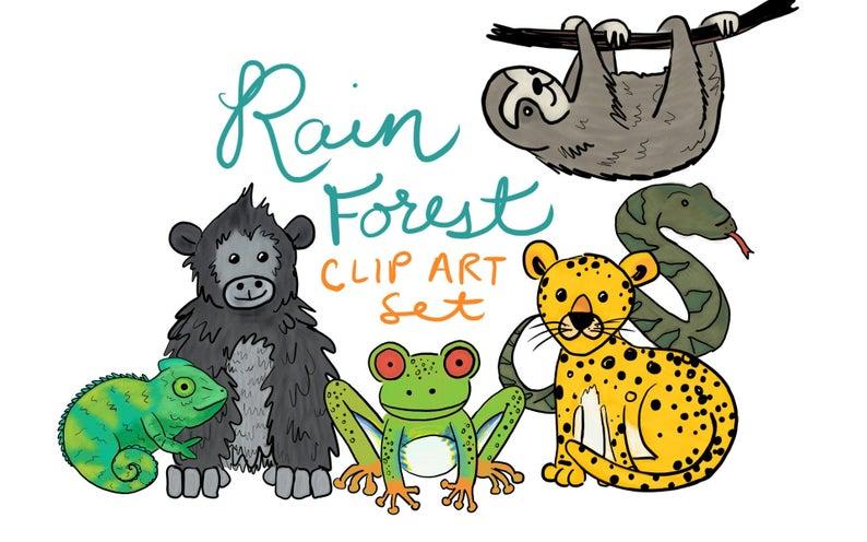Animals clipart rainforest. Hand drawn animal clip