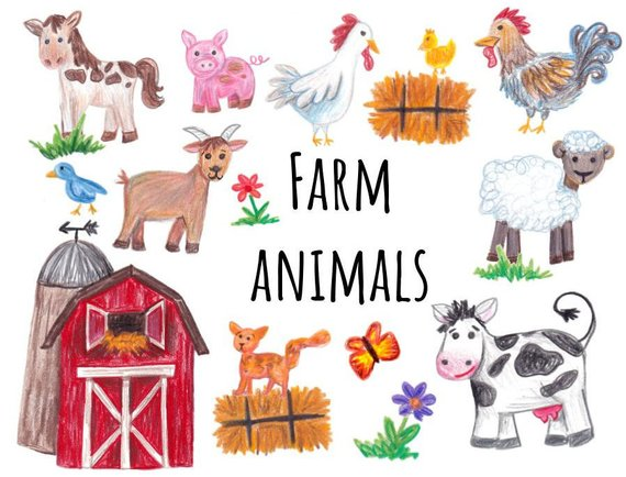 Hand drawn farm cow. Animals clipart rooster