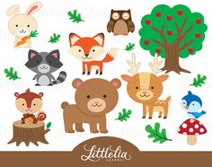 Kawaii woodland cute woondland. Animals clipart spring