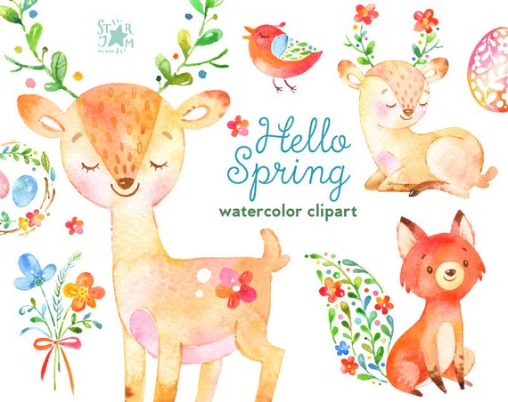 Animals clipart spring. Hello watercolor and floral