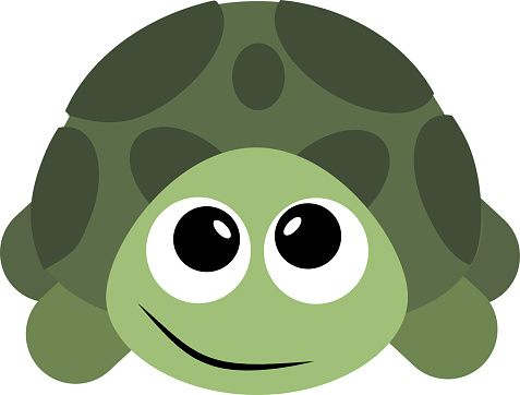 Animals clipart turtle.  best turtles images