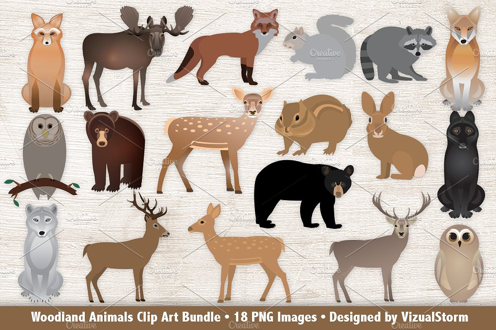 Clip art bundle illustrations. Animals clipart woodland
