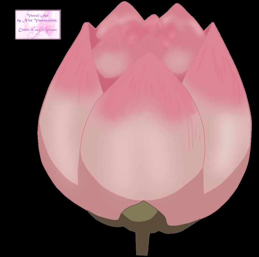 Lotus gallery wallpaper hd. Anime flower png