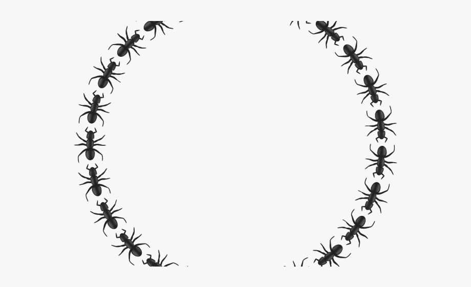 Icon circle png free. Ant clipart border