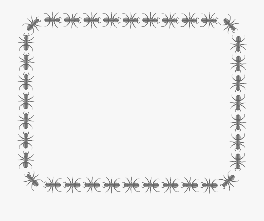 Ant clipart border. Png freeuse library big